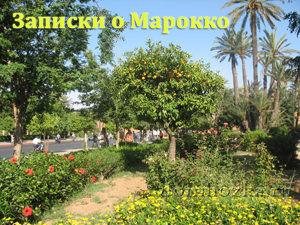 записки о Марокко