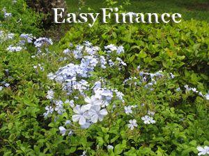 easyfinance: учет личных финансов